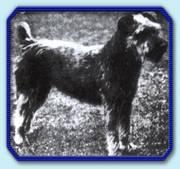 1921-ch-bernadetta-of-muchia